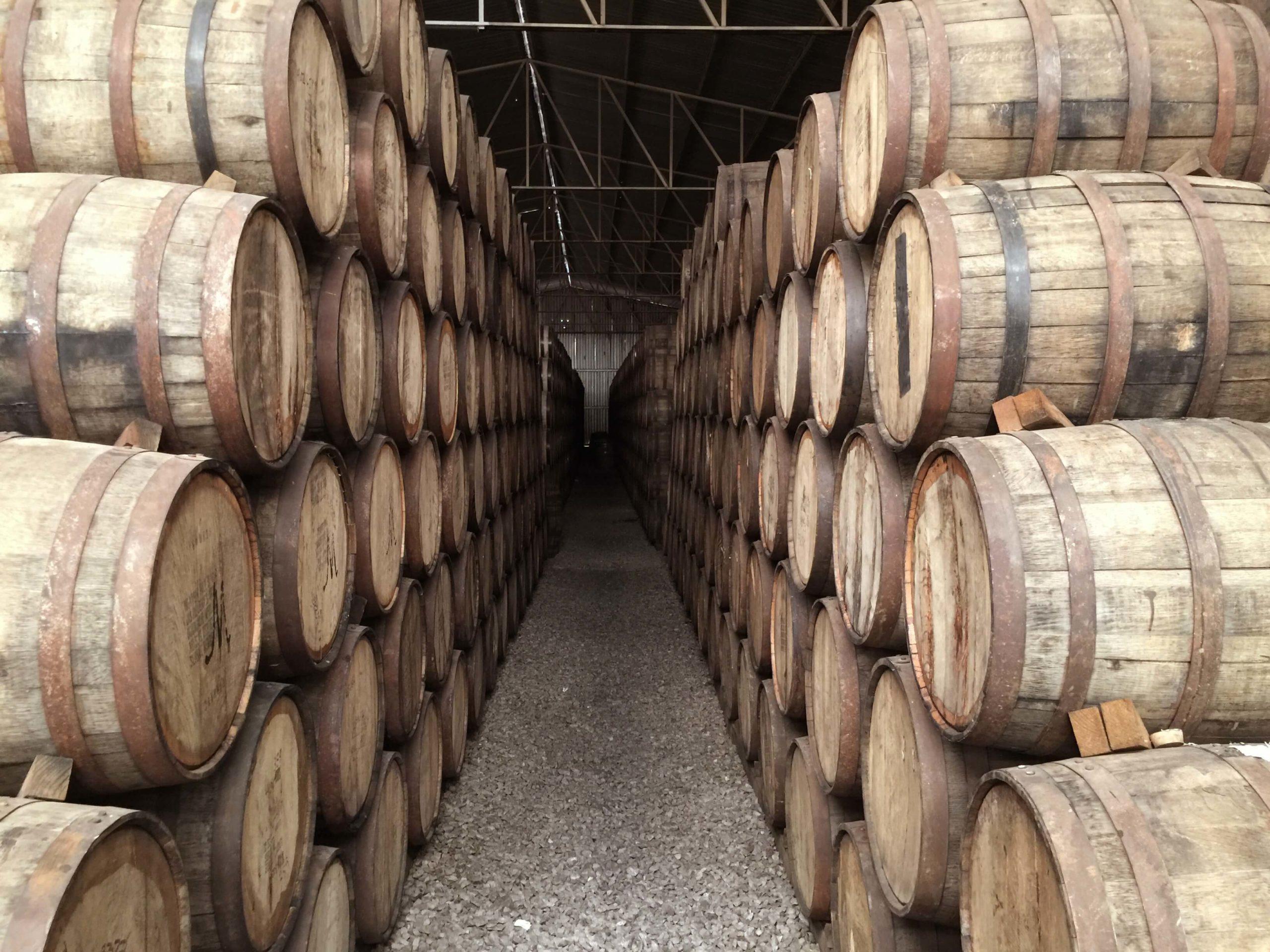 Maison Peyrat - Our cellars